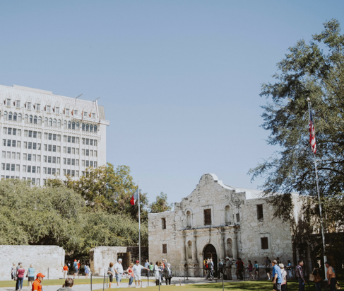 Alamo View